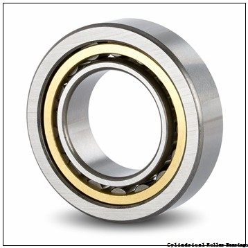105 mm x 225 mm x 49 mm  NSK NJ 321 W Cylindrical Roller Bearings