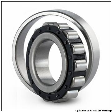 75 mm x 160 mm x 37 mm  NSK NJ315 M Cylindrical Roller Bearings
