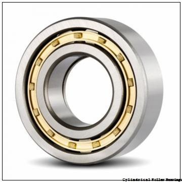 45 mm x 100 mm x 25 mm  NSK N 309 W C3 Cylindrical Roller Bearings