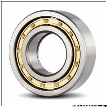 55 mm x 100 mm x 21 mm  NSK NUP 211 W Cylindrical Roller Bearings