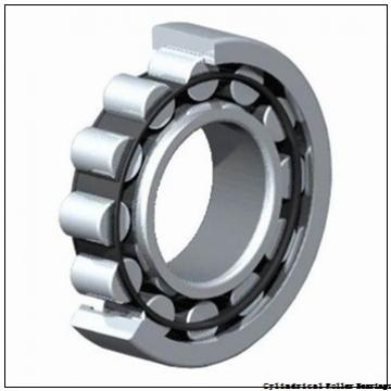 95 mm x 170 mm x 32 mm  NSK NU219W C3 Cylindrical Roller Bearings
