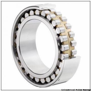 30 mm x 62 mm x 20 mm  NSK NJ 2206 W Cylindrical Roller Bearings
