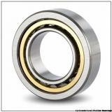 Link-Belt M1219UV Cylindrical Roller Bearings