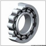 Link-Belt MR5217EX Cylindrical Roller Bearings