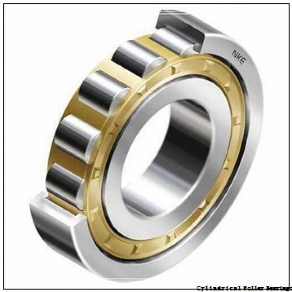 25 mm x 52 mm x 15 mm  NSK NJ 205 M C3 Cylindrical Roller Bearings #2 image