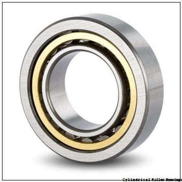 25 mm x 52 mm x 15 mm  NSK NJ 205 M C3 Cylindrical Roller Bearings #1 image