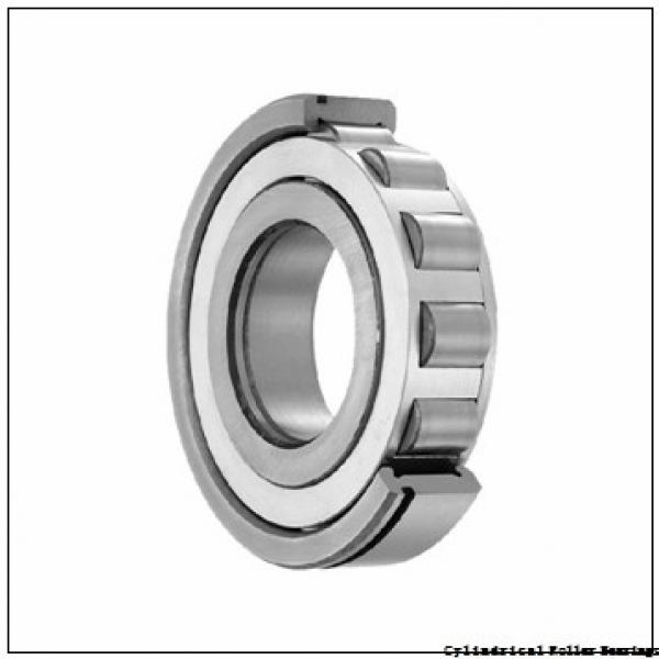 120 mm x 260 mm x 55 mm  NSK NJ324 M Cylindrical Roller Bearings #1 image